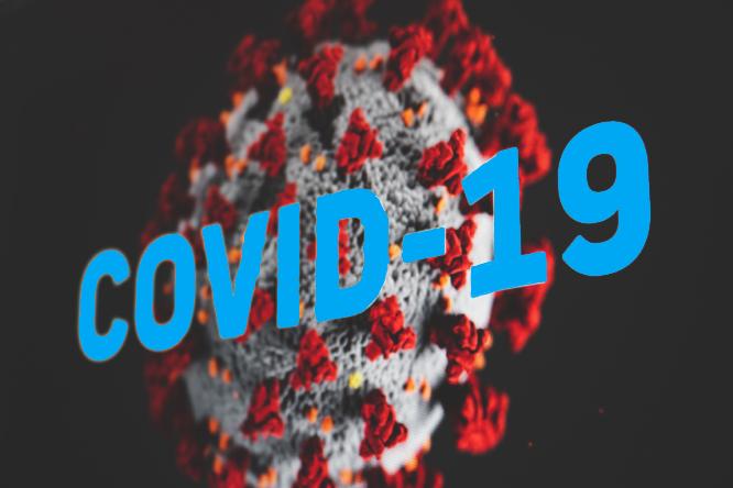 UPDATE: Präventive Maßnahmen bei tsf aufgrund Coronavirus